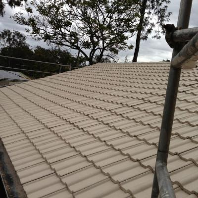 Roof Painters Near Me Tfs Painting Contractors Brisbane